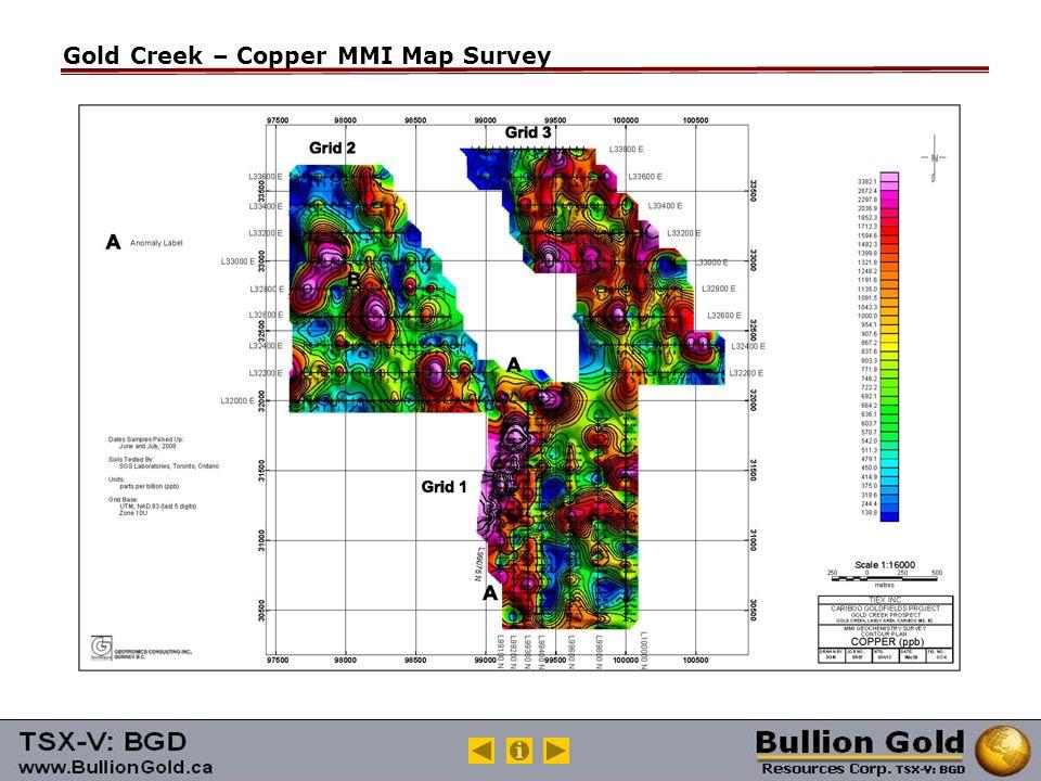 Gold Creek – Copper MMI Map Survey