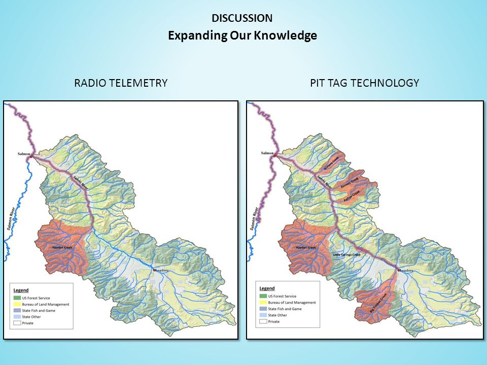 DISCUSSION RADIO TELEMETRYPIT TAG TECHNOLOGY Expanding Our Knowledge