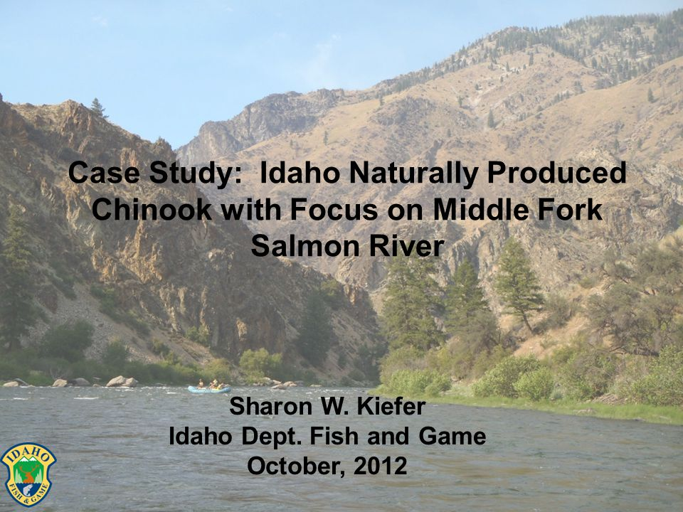Case Study: Idaho Naturally Produced Chinook with Focus on Middle Fork Salmon River Sharon W.