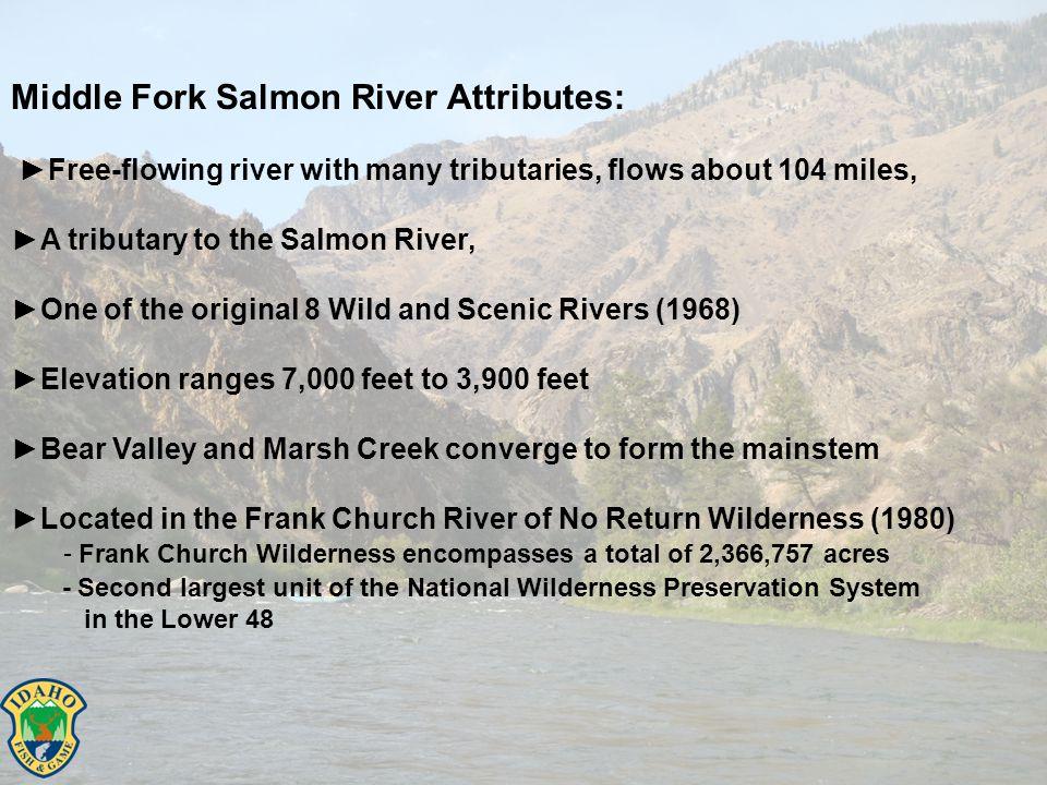 Snake River Spring/Summer Chinook ESU IdahoIdaho (cont.)Oregon & Washington South Fk Salmon MPGUpper Salmon MPGLower Snake MPG South Fk MainstemUpper Salmon MainstemTucannon R.