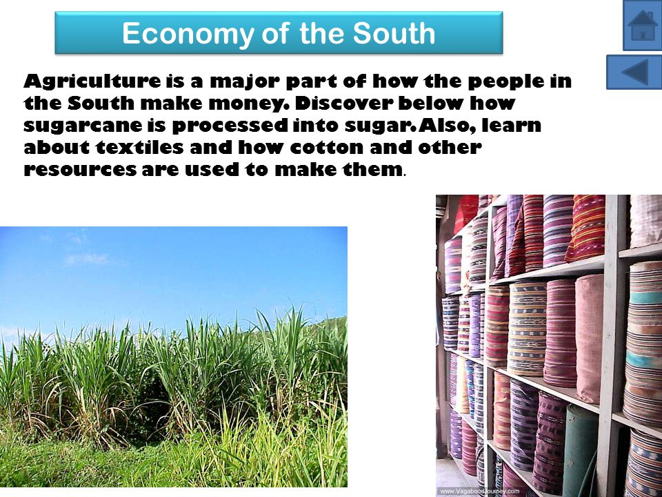 Agriculture is a major part of how the people in the South make money. Discover below how sugarcane is processed into sugar. Also, learn about textile