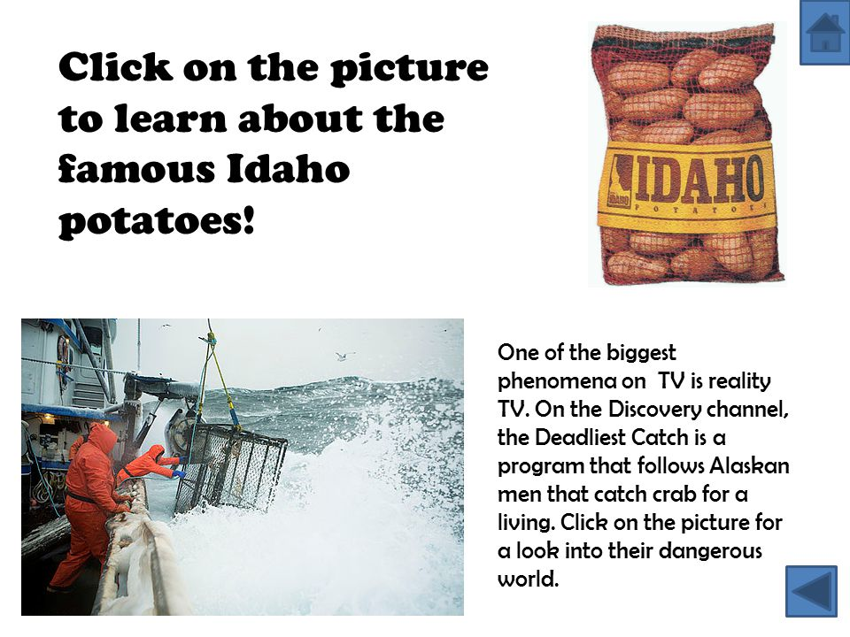 One of the biggest phenomena on TV is reality TV. On the Discovery channel, the Deadliest Catch is a program that follows Alaskan men that catch crab