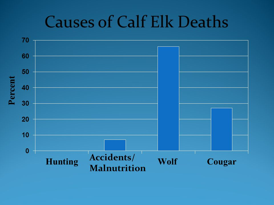 Accidents/ Malnutrition Causes of Calf Elk Deaths