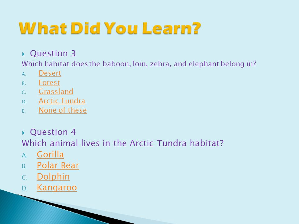  Question 3 Which habitat does the baboon, loin, zebra, and elephant belong in.