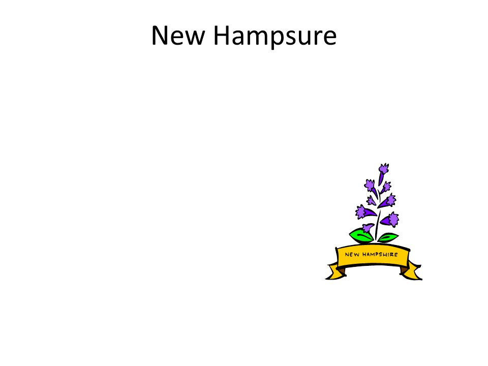 New Hampsure