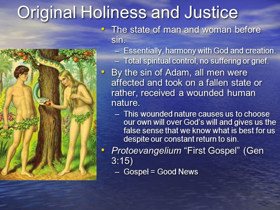 Original Holiness and Justice The state of man and woman before sin. –Essentially, harmony with God and creation. –Total spiritual control, no sufferi