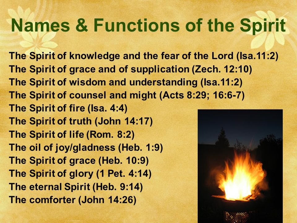 Names & Functions of the Spirit The Spirit of knowledge and the fear of the Lord (Isa.11:2) The Spirit of grace and of supplication (Zech.