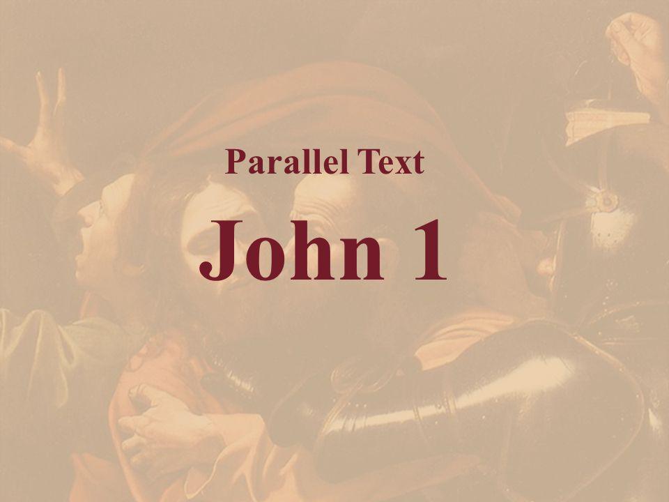 John 1 Parallel Text