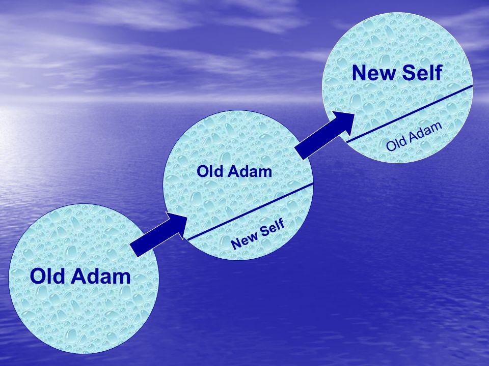 Old Adam N e w S e l f O l d A d a m Old Adam New Self