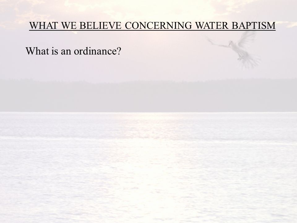 WHAT WE BELIEVE CONCERNING WATER BAPTISM What is an ordinance