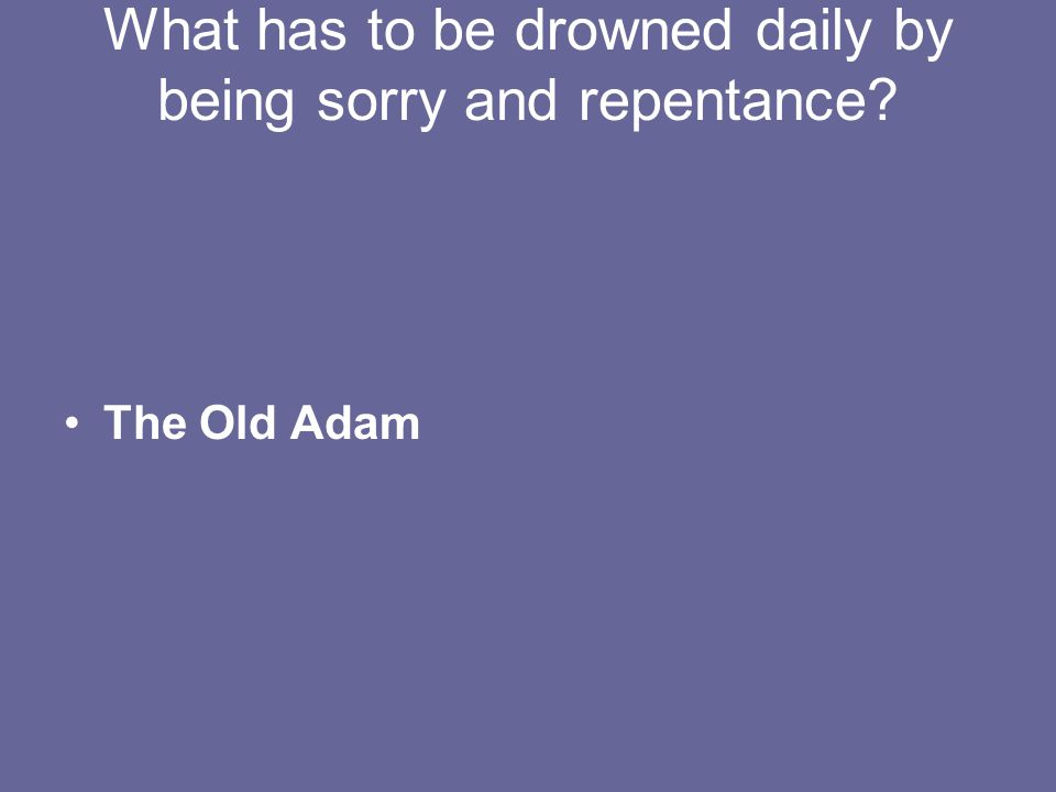 What has to be drowned daily by being sorry and repentance The Old Adam