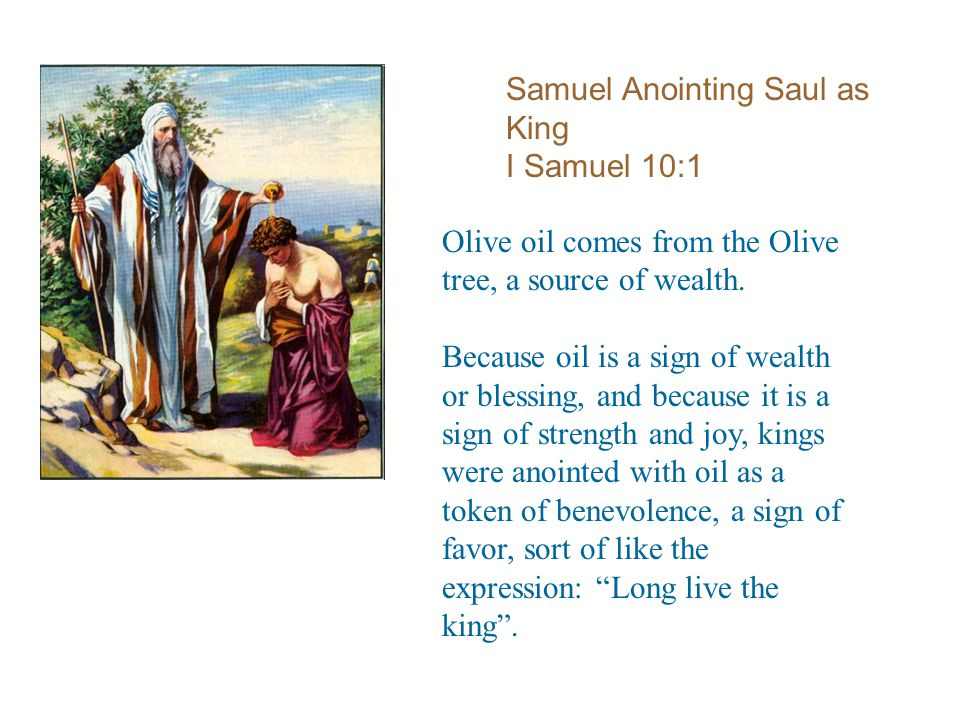 Samuel Anointing Saul as King I Samuel 10:1 Olive oil comes from the Olive tree, a source of wealth.