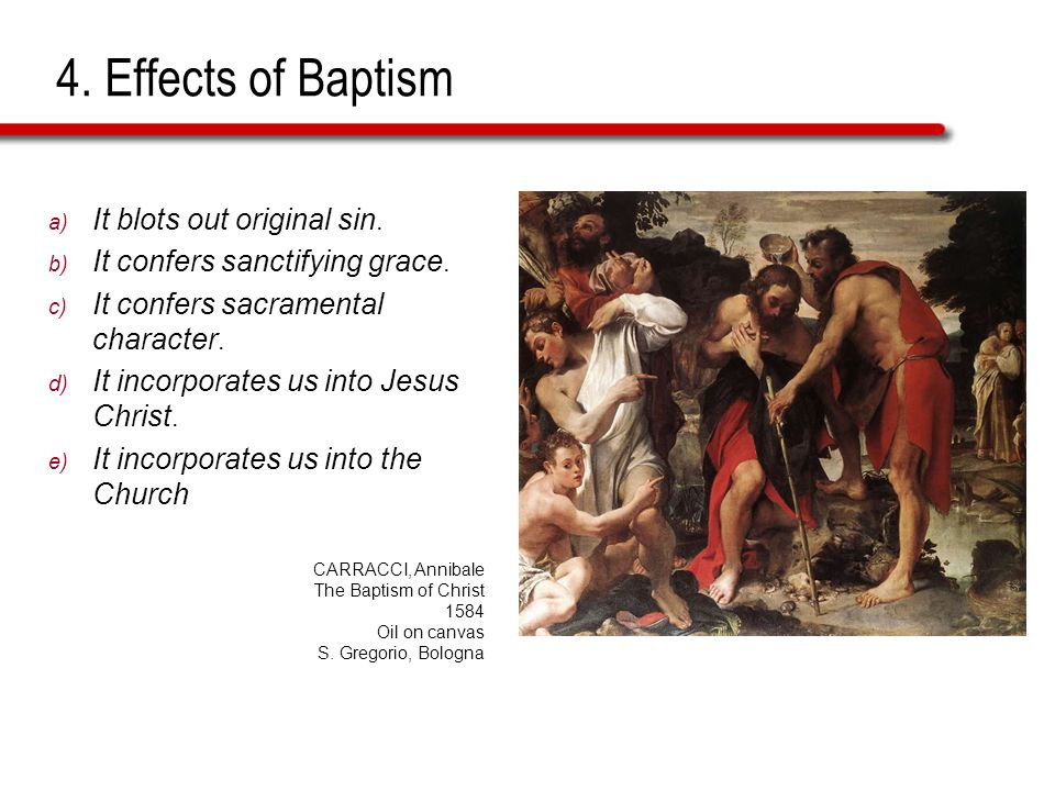 4. Effects of Baptism a) It blots out original sin.