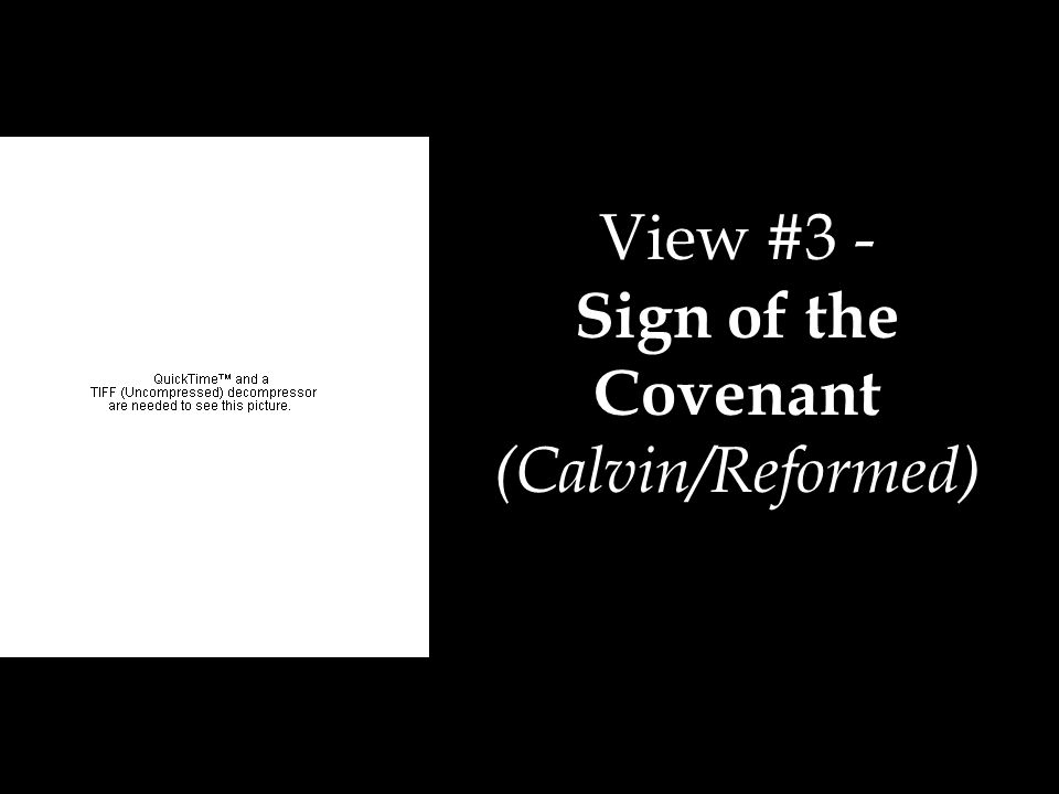 View #3 - Sign of the Covenant (Calvin/Reformed)
