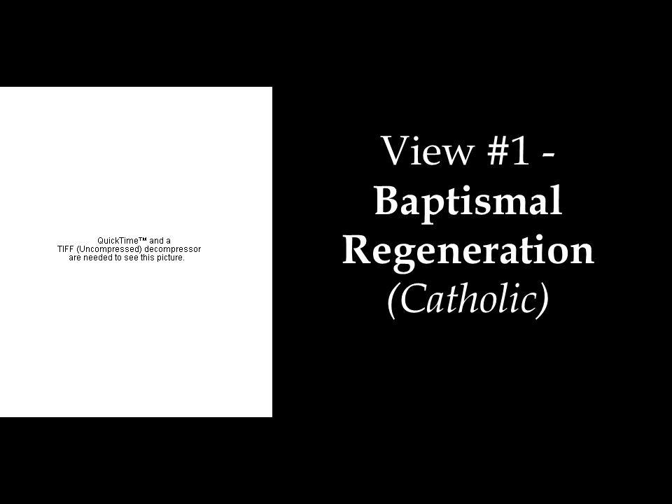 View #1 - Baptismal Regeneration (Catholic)