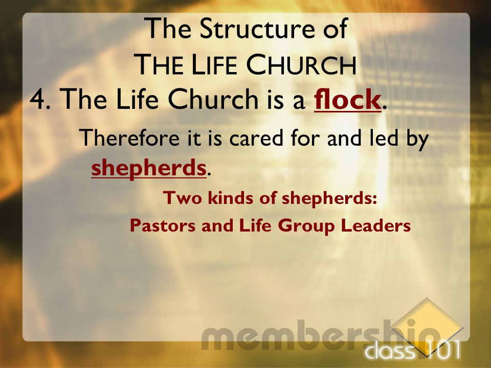 The Structure of T HE L IFE C HURCH 4. The Life Church is a flock. Therefore it is cared for and led by shepherds. Two kinds of shepherds: Pastors and