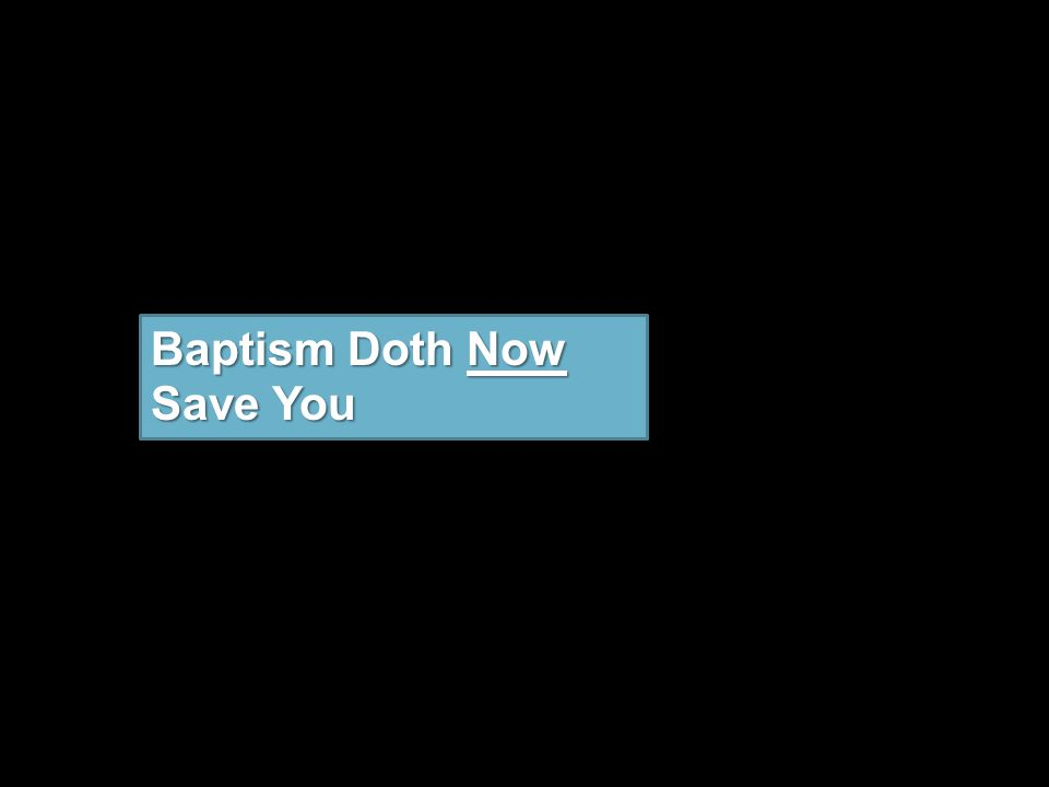 Baptism Doth Now Save You