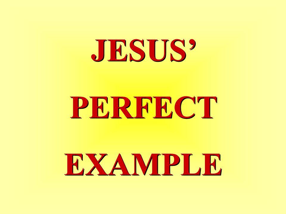 JESUS' PERFECT EXAMPLE JESUS' PERFECT EXAMPLE