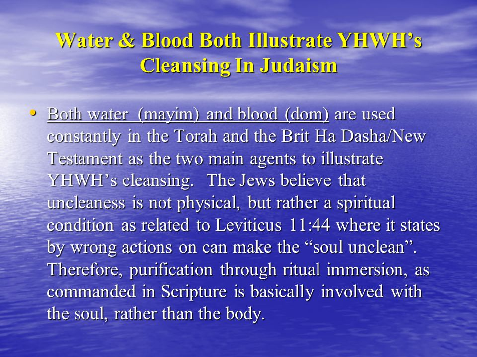 Water & Blood Both Illustrate YHWH's Cleansing In Judaism Both water (mayim) and blood (dom) are used constantly in the Torah and the Brit Ha Dasha/New Testament as the two main agents to illustrate YHWH's cleansing.