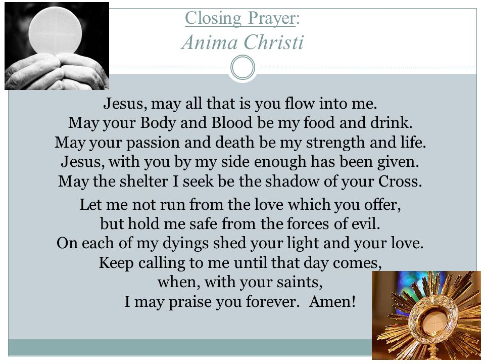 Closing Prayer: Anima Christi Jesus, may all that is you flow into me.