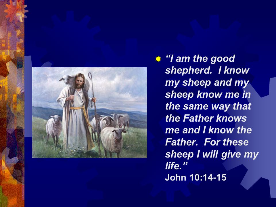 " ""I am the good shepherd. I know my sheep and my sheep know me in the same way that the Father knows me and I know the Father. For these sheep I will"