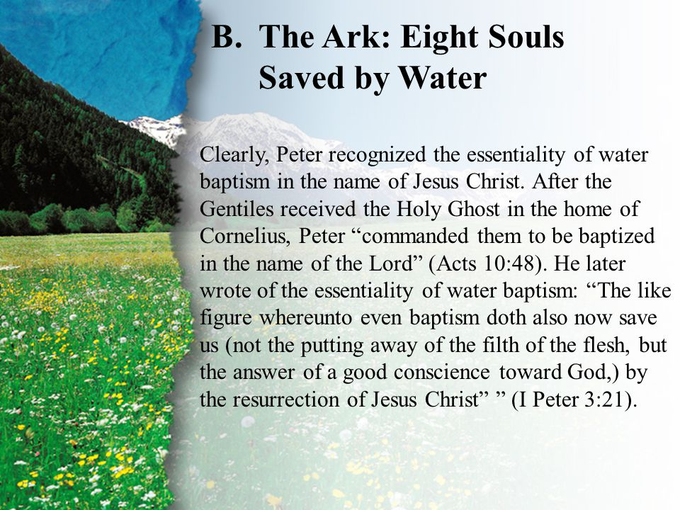 I. Baptism—Types and Shadows B B.The Ark: Eight Souls Saved by Water Clearly, Peter recognized the essentiality of water baptism in the name of Jesus