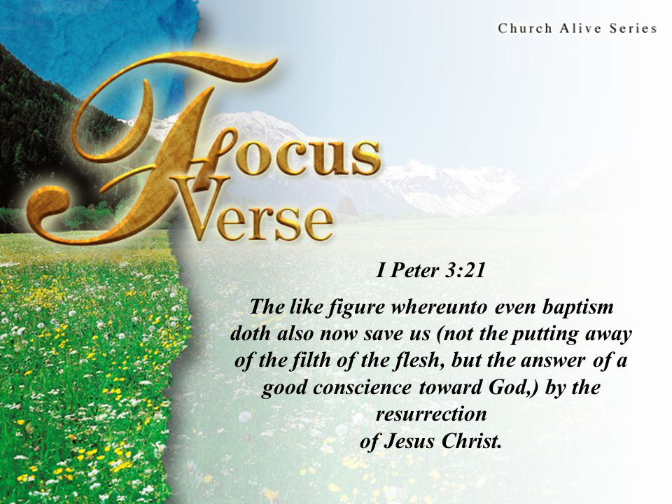 Focus Verse I Peter 3:21 The like figure whereunto even baptism doth also now save us (not the putting away of the filth of the flesh, but the answer of a good conscience toward God,) by the resurrection of Jesus Christ.