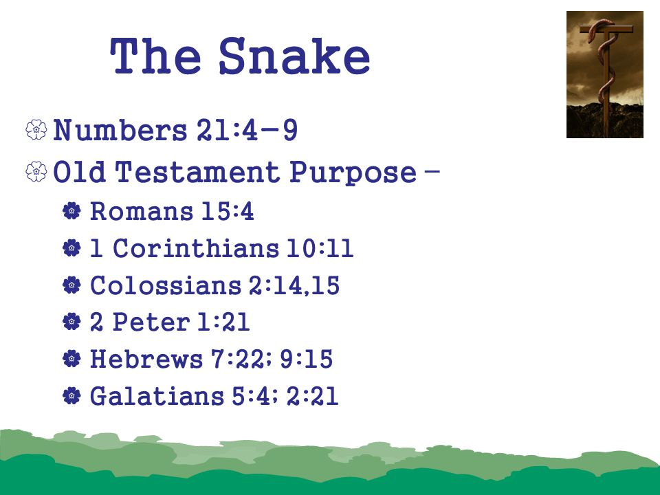 The Snake  Numbers 21:4-9  Old Testament Purpose –  Romans 15:4  1 Corinthians 10:11  Colossians 2:14,15  2 Peter 1:21  Hebrews 7:22; 9:15  Ga