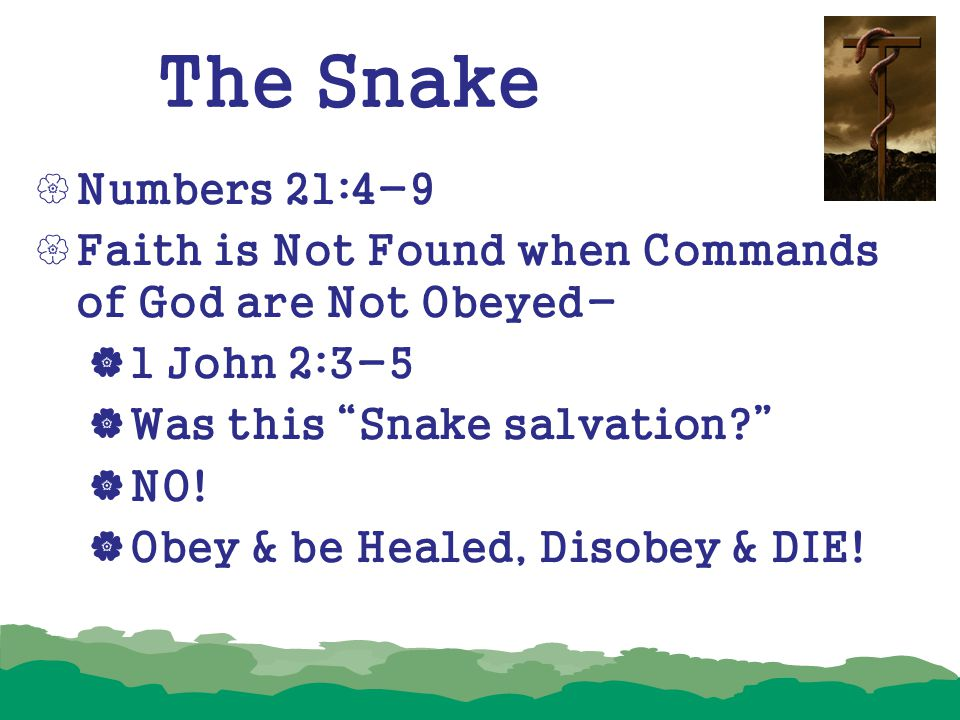 """The Snake  Numbers 21:4-9  Faith is Not Found when Commands of God are Not Obeyed-  1 John 2:3-5  Was this """"Snake salvation?""""  NO!  Obey & be He"""