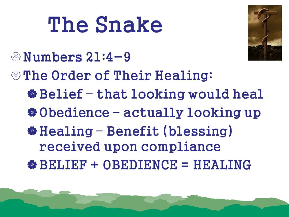 The Snake  Numbers 21:4-9  The Order of Their Healing:  Belief – that looking would heal  Obedience – actually looking up  Healing – Benefit (ble
