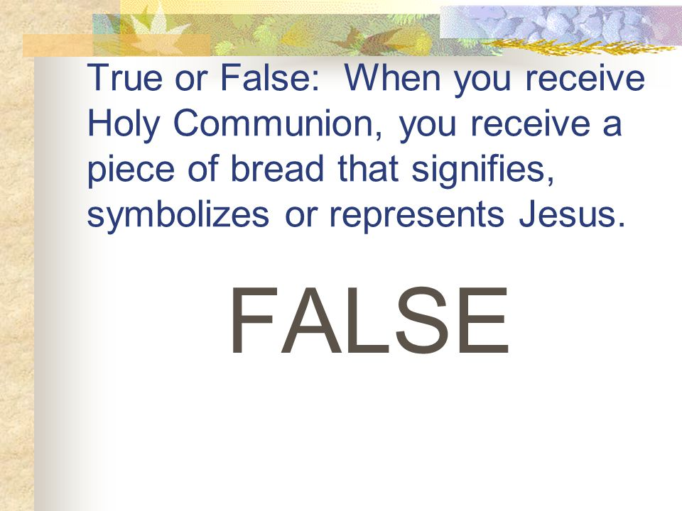 True or False: When you receive Holy Communion, you receive a piece of bread that signifies, symbolizes or represents Jesus.