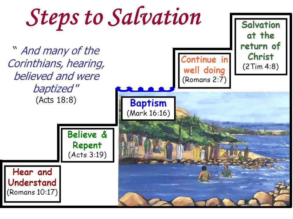 Believe & Repent (Acts 3:19) Hear and Understand (Romans 10:17) Continue in well doing (Romans 2:7) Salvation at the return of Christ (2Tim 4:8) Baptism (Mark 16:16) And many of the Corinthians, hearing, believed and were baptized (Acts 18:8) Steps to Salvation