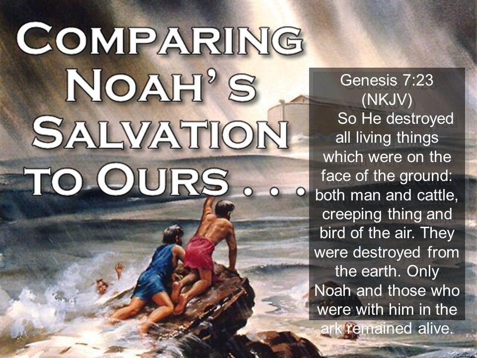 Don McClain 30 Genesis 7:23 (NKJV) So He destroyed all living things which were on the face of the ground: both man and cattle, creeping thing and bir