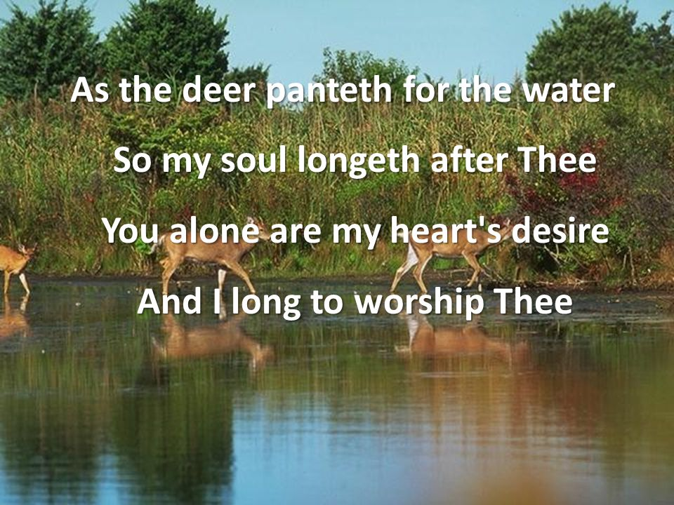 As the deer panteth for the water So my soul longeth after Thee You alone are my heart's desire And I long to worship Thee