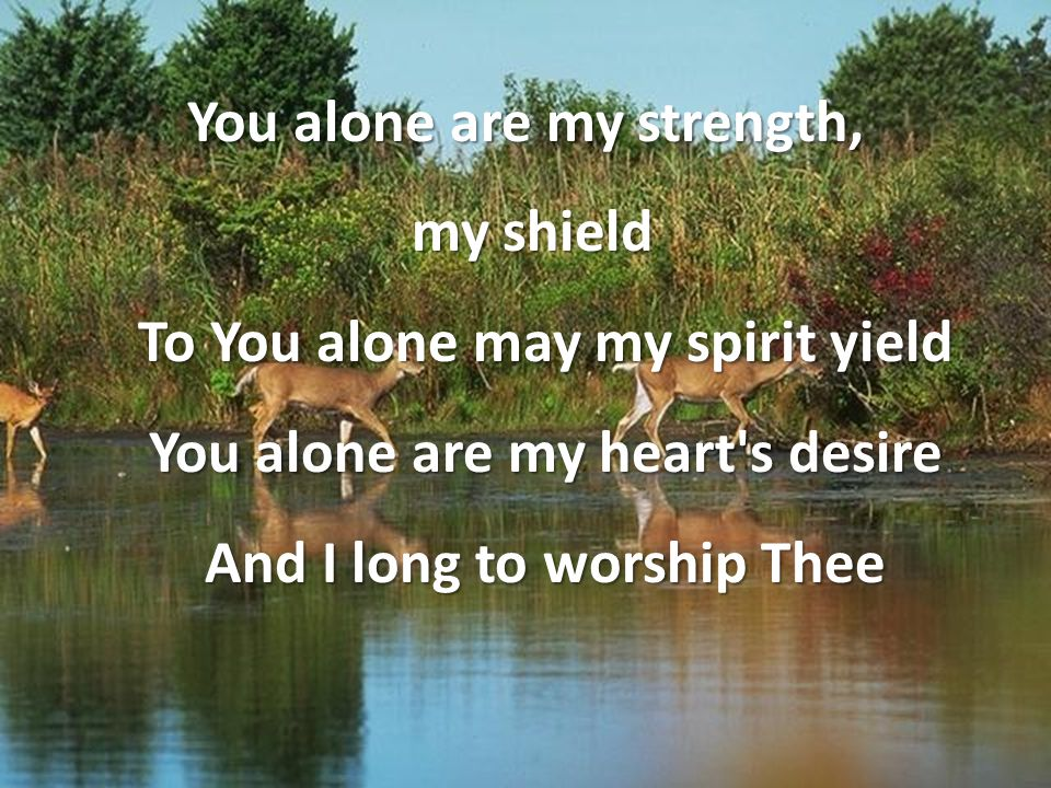 You alone are my strength, my shield To You alone may my spirit yield You alone are my heart's desire And I long to worship Thee my shield To You alon