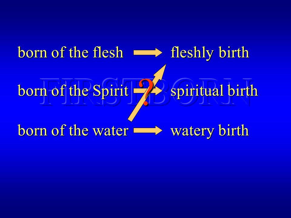 born of the flesh fleshly birth born of the Spirit spiritual birth born of the water watery birth