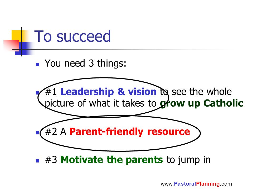 To succeed You need 3 things: #1 Leadership & vision to see the whole picture of what it takes to grow up Catholic #2 A Parent-friendly resource #3 Motivate the parents to jump in www.PastoralPlanning.com