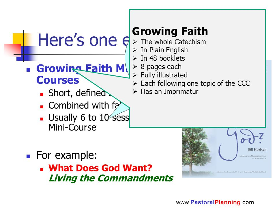 Here's one example Growing Faith Mini- Courses Short, defined areas of study Combined with faith sharing Usually 6 to 10 sessions per Mini-Course For