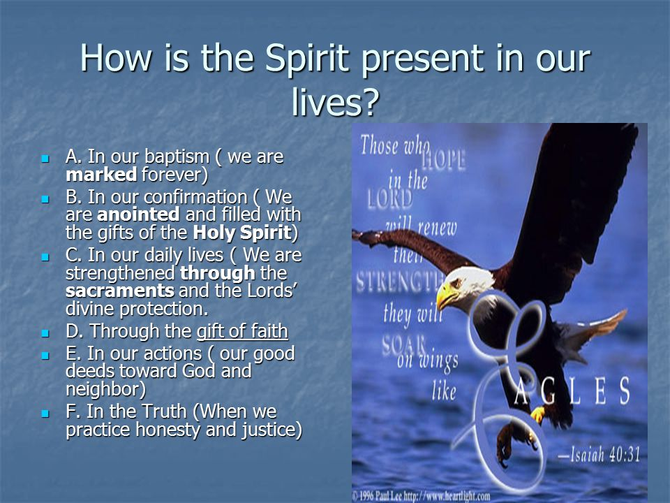 How is the Spirit present in our lives? A. In our baptism ( we are marked forever) A. In our baptism ( we are marked forever) B. In our confirmation (
