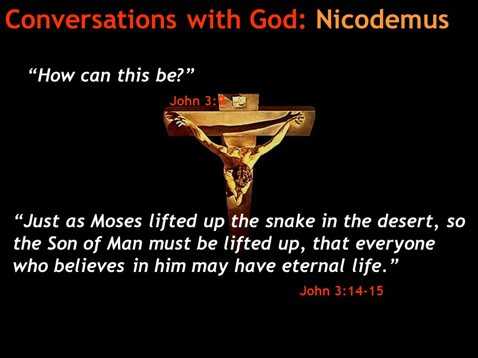 Conversations with God: Nicodemus How can this be? John 3:9 Just as Moses lifted up the snake in the desert, so the Son of Man must be lifted up, that everyone who believes in him may have eternal life. John 3:14-15