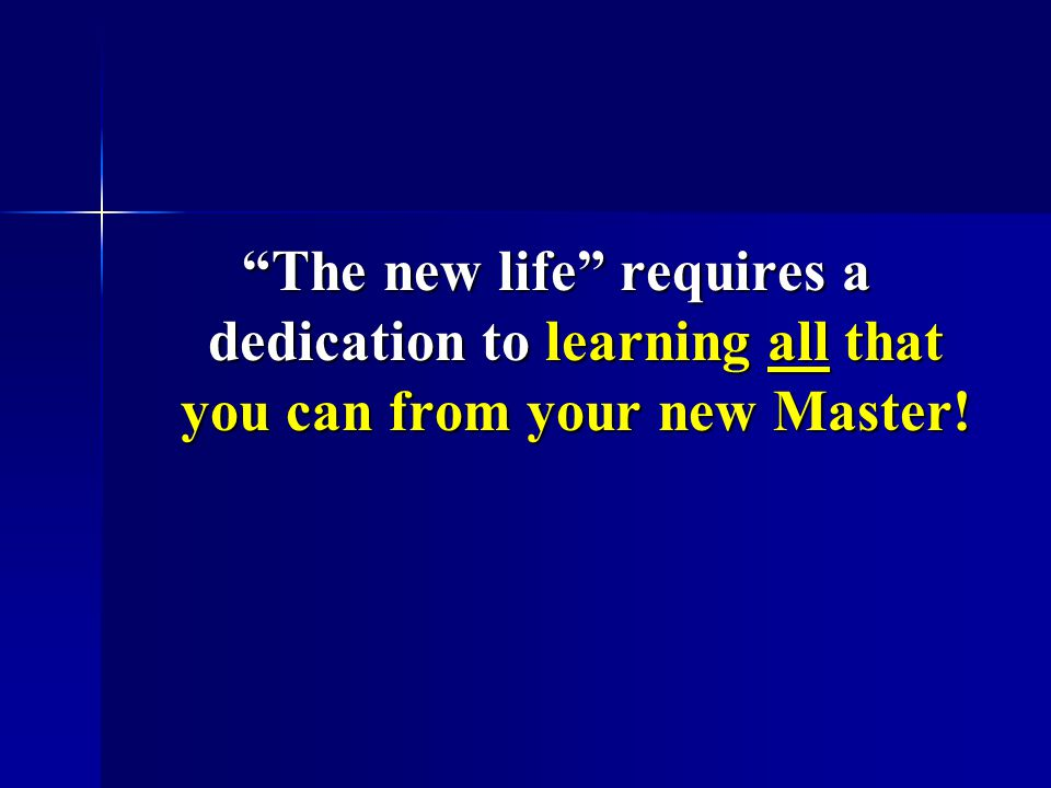 The new life requires a dedication to learning all that you can from your new Master!