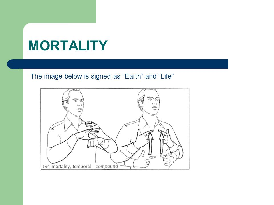 "MORTALITY The image below is signed as ""Earth"" and ""Life"""