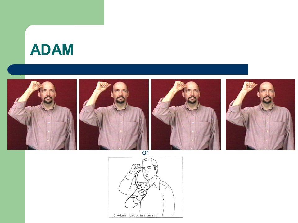 ADAM or