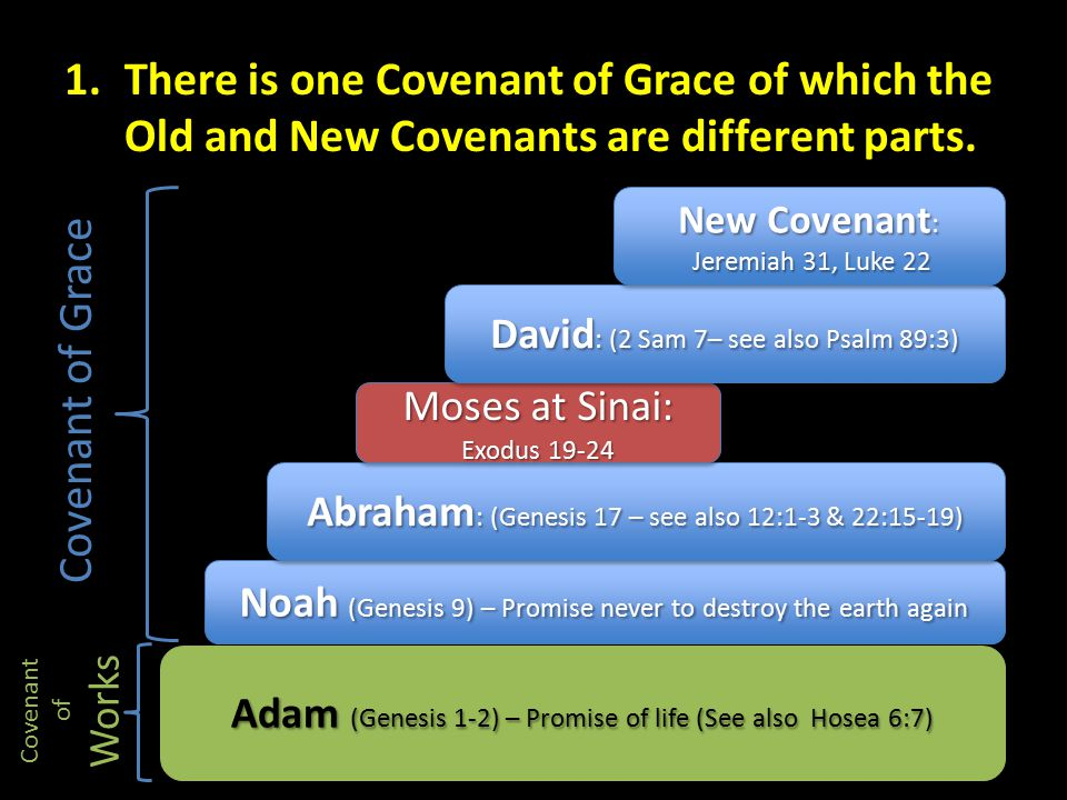 Noah (Genesis 9) – Promise never to destroy the earth again Abraham : (Genesis 17 – see also 12:1-3 & 22:15-19) Moses at Sinai: Exodus 19-24 David : (