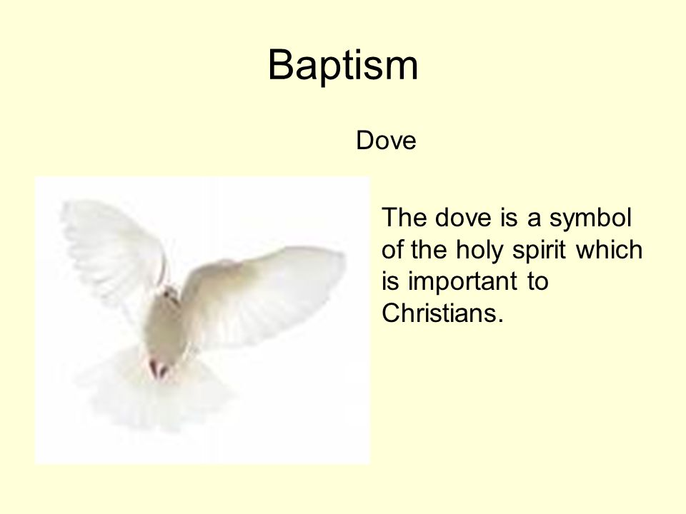 Baptism Dove The dove is a symbol of the holy spirit which is important to Christians.