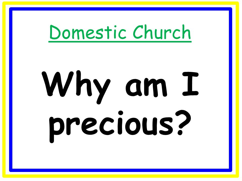 Domestic Church Why do we have a family and who is my family?