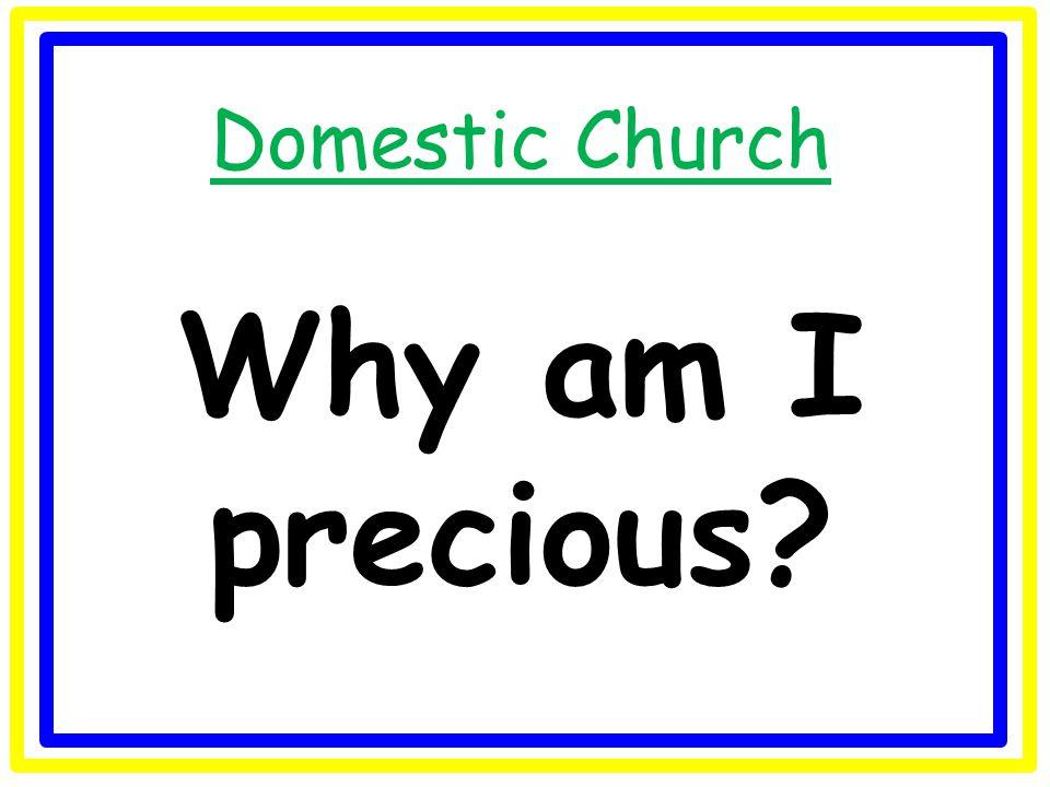 Universal Church Can I be a steward of creation?