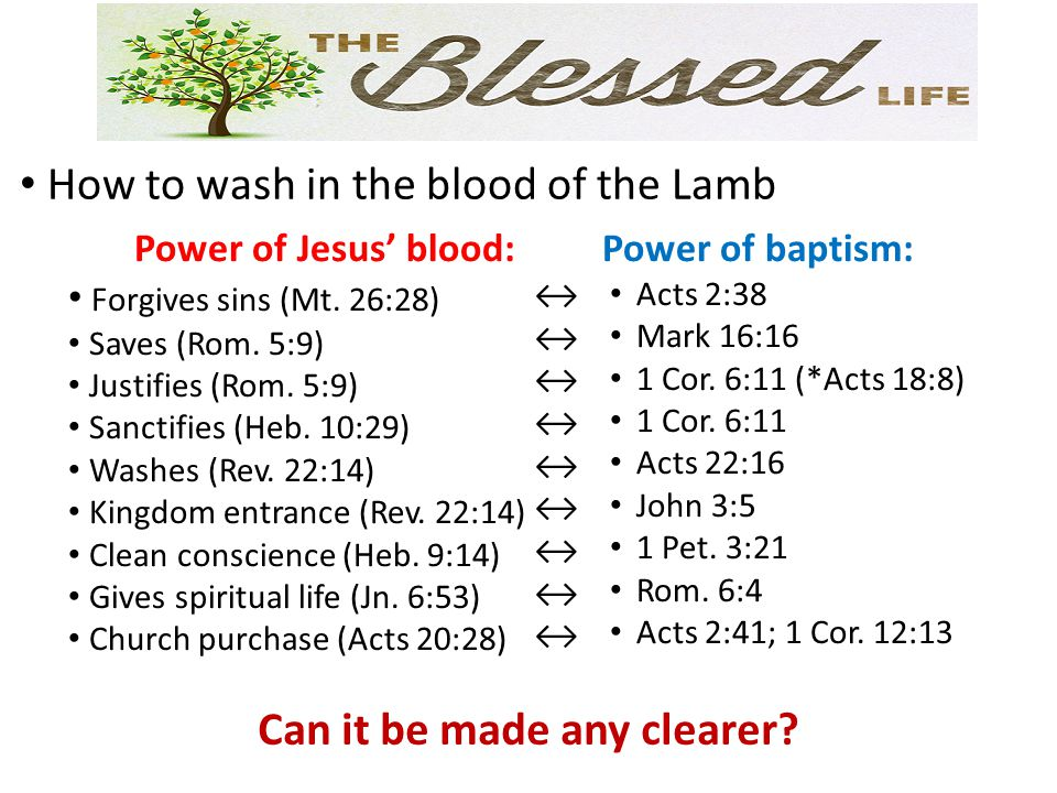 How to wash in the blood of the Lamb Power of Jesus' blood: Forgives sins (Mt. 26:28) Saves (Rom. 5:9) Justifies (Rom. 5:9) Sanctifies (Heb. 10:29) Wa