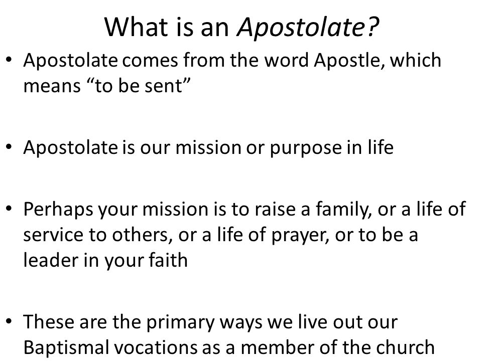 Types of Vocations: Lay Vocations Single life Married life Religious life Contemplative prayer Apostolic service Ordained Vocations Deacon/Servant Priest/Guide Bishop/Administrator