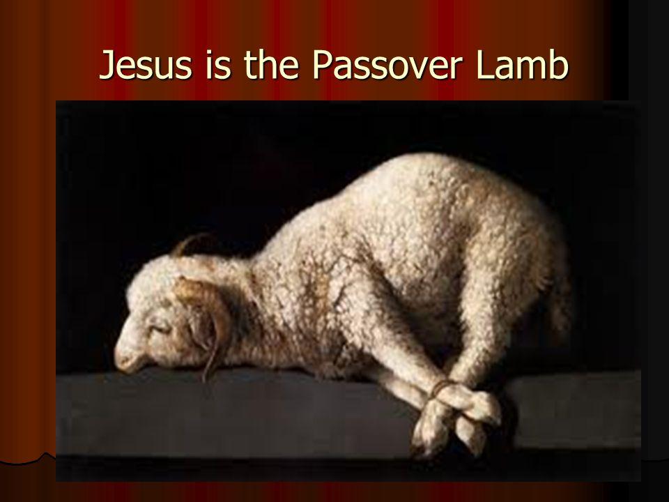 Jesus is the Passover Lamb